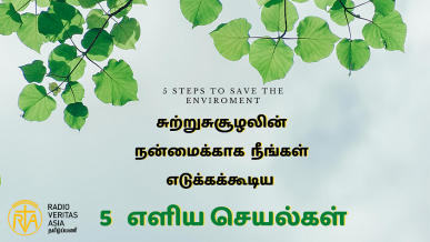 5 Steps to save the environement